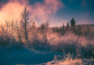 river-frost_