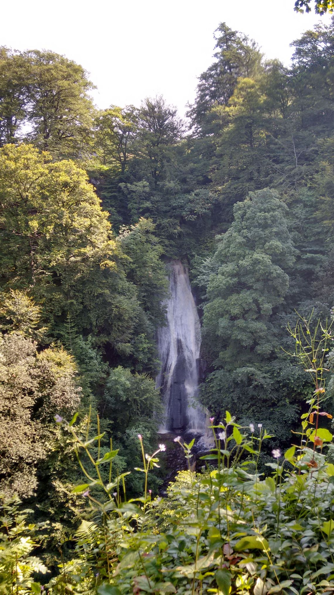 The Falls of Acharn